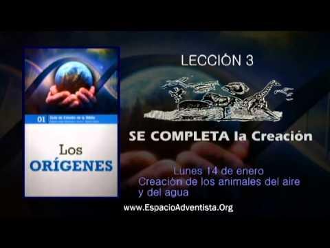 Lección 3 – Lunes 14 de enero 2013 – Creación de los animales del aire y del agua