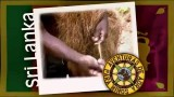 Día 3 – Sri Lanka – ESCUELA CRISTIANA DE VACACIONES 2013