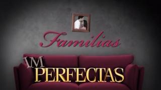 3 El Factor Esfuerzo y Dedicación: Familias [Im]Perfectas – Semana de la Familia 2014