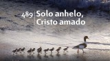 Himno 489 – Solo anhelo, Cristo amado – NUEVO HIMNARIO ADVENTISTA