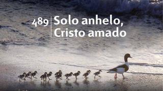 Himno 489 | Solo anhelo, Cristo amado | Himnario Adventista