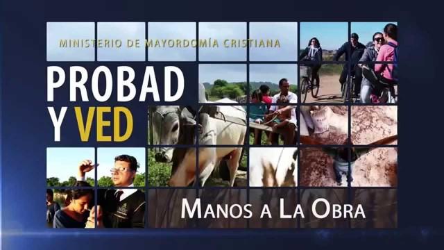 10 de enero | Manos a la obra | Probad y Ved | Iglesia Adventista