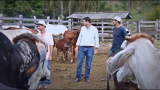31 de enero | Tres hermanos, un solo sueño | Probad y Ved | Iglesia Adventista