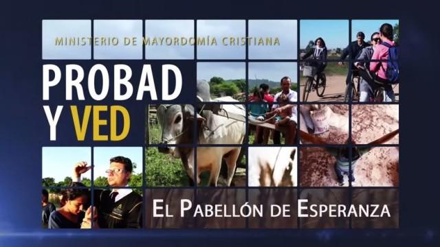 15 de agosto | El pabellón de esperanza | Probad y Ved | Iglesia Adventista