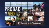 12 de diciembre | El inspector sanitario | Probad y Ved 2015 | Iglesia Adventista