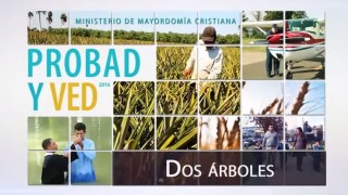 30 de enero | Dos árboles | Probad y Ved 2016 | Iglesia Adventista