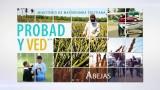 5 de marzo | Abejas | Probad y Ved 2016 | Iglesia Adventista