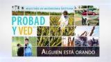 23 de abril | Alguien está orando | Probad y Ved 2016 | Iglesia Adventista