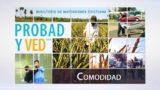 13 de agosto | Comodidad | Probad y Ved 2016 | Iglesia Adventista