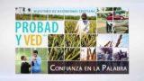 24 de septiembre | Confianza en la Palabra | Probad y Ved 2016 | Iglesia Adventista