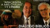 Diálogo Bíblico | Domingo 4 de junio 2017 | Falsos profetas y maestros | Escuela Sabática