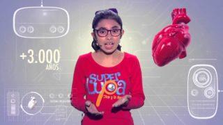 La Autopista del Cuerpo – El sistema circulatorio | SUPER LUPA | Primera temporada