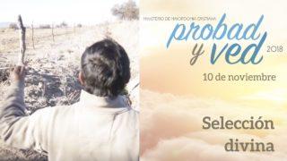 10 de Noviembre | Selección divina | Probad y Ved 2018 | Iglesia Adventista