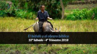 10º Sábado | El búfalo y el obrero bíblico | Informativo mundial de las misiones | 4to trimestre 2018