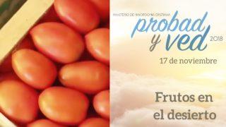 17 de Noviembre | Frutos en el desierto | Probad y Ved 2018 | Iglesia Adventista