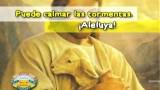 10. Galilea – ESCUELA VACACIONAL – UN VIAJE POR EL MAR DE GALILEA