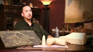Daniel y los Reyes Neobabilónicos – EVIDENCIAS NT