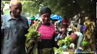 Corto 1 – El regalo de Prisca – Informe Misionero Mundial – 2do Trimestre 2013