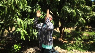 23 de mayo | En el clima de la fe | Probad y Ved | Iglesia Adventista