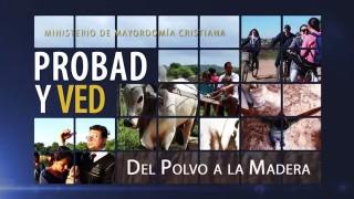 26 de septiembre | Del polvo a la madera | Probad y Ved | Iglesia Adventista