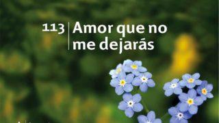 Himno 113 | Amor que no me dejarás | Himnario Adventista