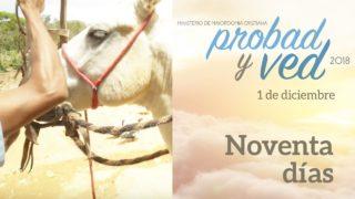 1 de Diciembre | Noventa días | Probad y Ved 2018 | Iglesia Adventista