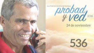 24 de Noviembre | 536 | Probad y Ved 2018 | Iglesia Adventista
