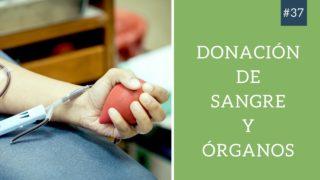 Los Adventistas y la Donación de sangre y Órganos | Hablando de Esperanza