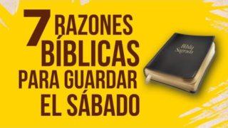 7 razones para guardar el Sábado | Rafael Diaz