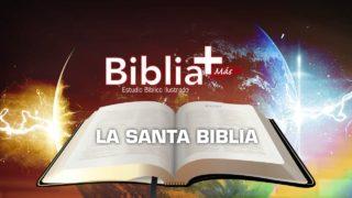 1 | La Santa Biblia | Estudio Bíblico en LSE