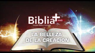 2 | La belleza de la Creación | Estudio Bíblico en LSE