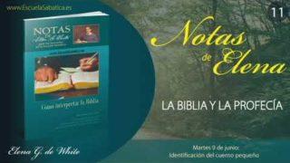 Notas de Elena | Martes 9 de junio del 2020 | Identificación del cuerno pequeño | Escuela Sabática